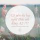 Co_nen_du_hoc_nghe_duc_với_A2