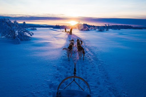 tìm hiểu về đất nước Phần Lan (12)