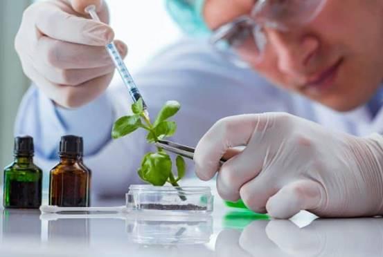 Du học Đức ngành công nghệ sinh học (11)