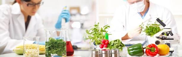 Du học ngành công nghệ thực phẩm (8)