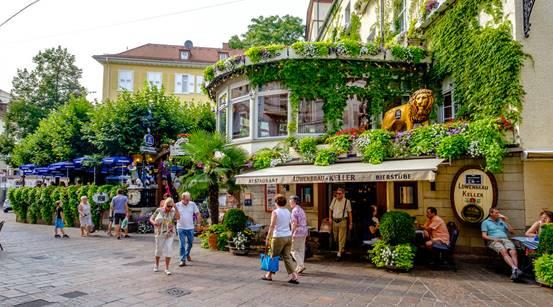 Rừng đen ở Đức (5)