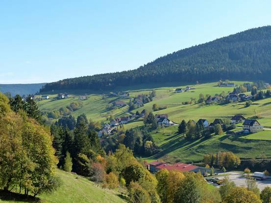 Rừng đen ở Đức (6)