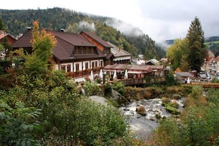 Rừng đen ở Đức (7)